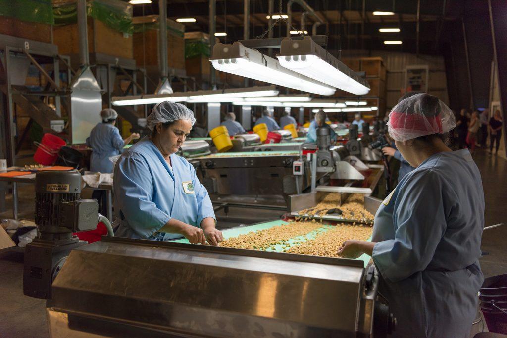 Walnut processing plant
