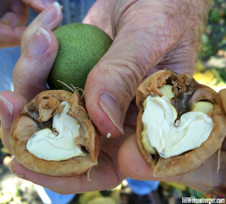 Walnuts? A Best Nut?