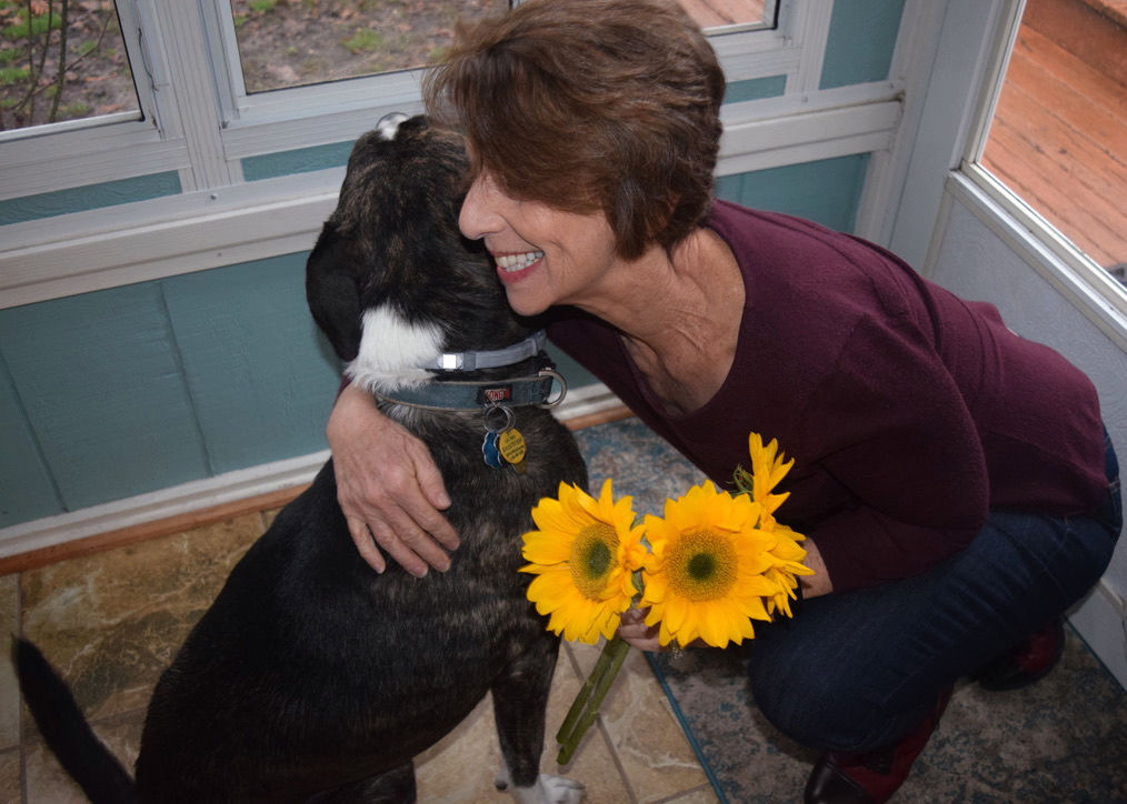 dog quieting critical inner voice